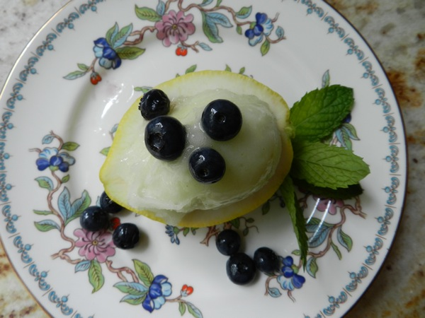 lemon sorbet with blueberries